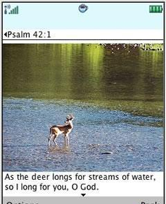 Bible Verses with Photo