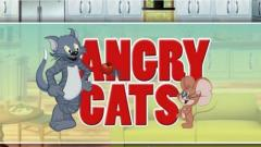 Angry cats. Cats vs mice