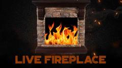 Live fireplace