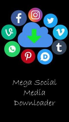 Mega social media downloader