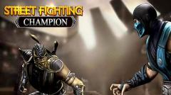 Street shadow fighting champion