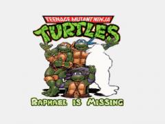 Teenage Mutant Ninja Turtles: Raphael is missing
