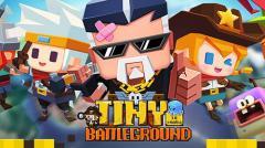 Tiny battleground