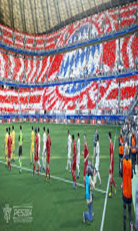 PES 2014 – Pro Evolution Soccer