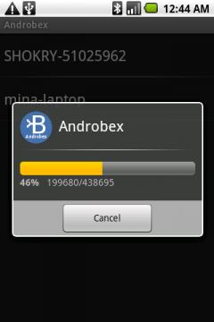Androbex