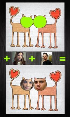 FaceInCard Pro