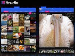 Flickr Studio