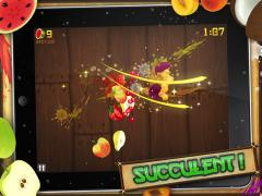 Fruit Ninja HD for iPad
