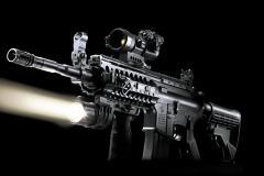 Gun Build 2011