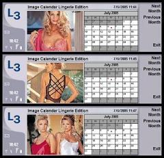 Image Calendar Lingerie Edition for Nokia 9500/9300
