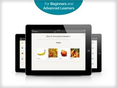 Learn Turkish with babbel.com on iPad
