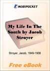 the enduring life of jacob stroyer Bring christ your broken life jim davis jacob knew god's plan to fulfill god's promise to abraham's descendants through his descendants.