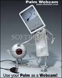 Palm Webcam