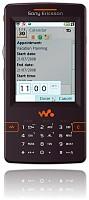 Sony Ericsson W950 Skin for Remote Professional
