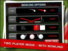 Stick Cricket for iPad