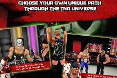 TNA Wrestling iMPACT