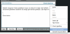 Turkish Deasciifier - Firefox Addon