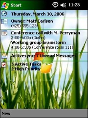 Vista Grass Theme for Pocket PC