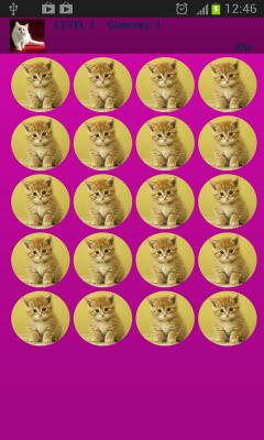 Beauty Cats Memory Game