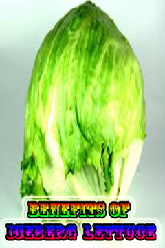 Benefits of Iceberg  lettuce