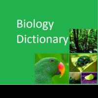 BiologyDictionary
