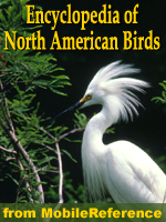 The Illustrated Encyclopedia Of North American Birds: An Essential Guide To Birds Of North America.