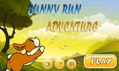 Bunny Adventure Game