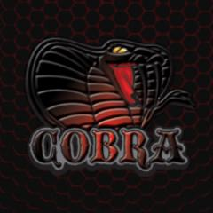 Cobra CFW Tools: Quick Access to webMAN, Screenshots, Coldboots, and Updated Firmware Files