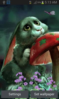 Cute Rabbit Lwp