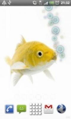 Fishy Fish Fish Live Wallpaper