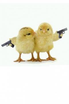 Gangstar Chicks