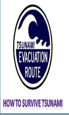 How To Survive Tsunami