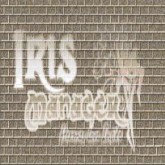 Iris Manager 2.52 OFFICIAL: Estwald Packs a 4.50 Punch!