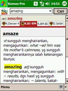 Kamus Pro English-Malay Dictionary