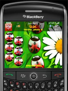 Animated Ladybird Theme for BlackBerry 8800