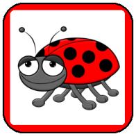 Ladybug Magic
