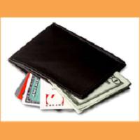 My Fat Wallet
