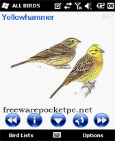 AviaSoft Pocket Birds Europe
