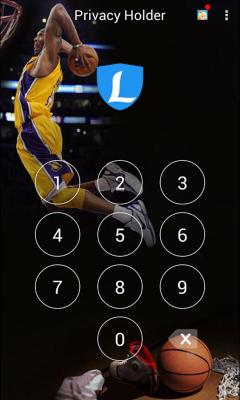 Privacy Theme Basketball
