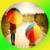 101 Rainy Day Ideas
