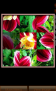 Nature Photo Puzzle