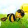 Buzz Buzz The Bee