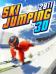 Ski Jumping 2011 3D