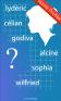 Name Profiler