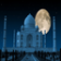 Taj Mahal Love Live Wallpaper