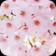 Cherry Flowers Live Wallpaper