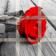 Red Rose jigsaw puzzle