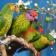 Nice Birds LWP