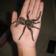 Pet Spider Live Wallpaper