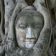 Buddha Tree Live Wallpaper